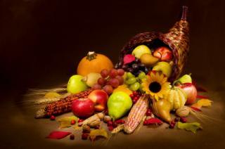 Dieta vegetariana. Avantaje si riscuri pentru sanatate. Partea 3 - Dezavantaje, Riscuri si Concluzii