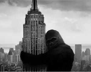 Proprietarul Empire State Building se listeaza pe bursa