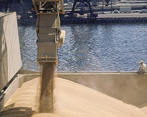 Egiptul a cumparat 240.000 de tone metrice de grau din Rusia si Romania