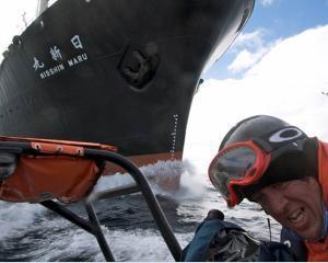 Japonia si-a suspendat vanatoarea de balene