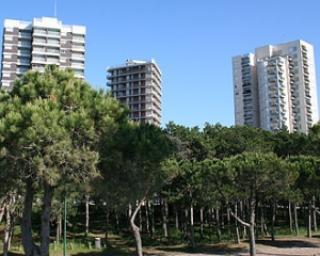 Cum arata preturile apartamentelor din Bucuresti in grila notarilor