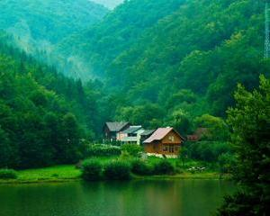 Cati bani da Romania pe mediu