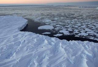 Planeta a facut temperatura. 2010, cel mai calduros an inregistrat vreodata