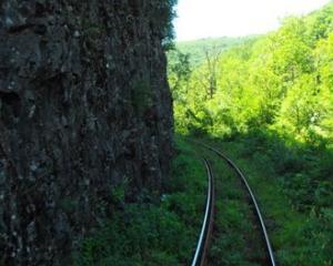 Guvernul a aprobat inchiderea a peste 1.000 de km de cale ferata