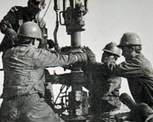 PETROL SI GAZE: 1.000 miliarde de dolari investiti in 2012