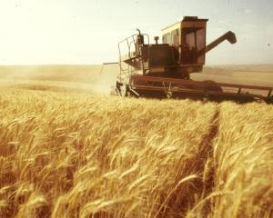APIA: Fermierii mai au la dispozitie o singura zi pentru depunerea cererilor de plata pe suprafata