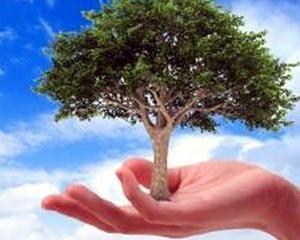 Romania a fost reprezentata la intalnirea practicienilor din domeniul achizitiilor publice referitoare la achizitiile publice verzi