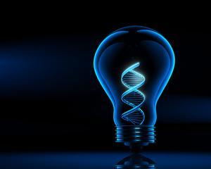 Succesul in afaceri ar putea fi scris in ADN