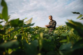 Top 5 afaceri agricole pe care le poti porni cu bani putini