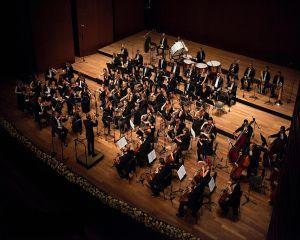 In cinstea Europei: Muzica simfonica va rasuna la AFI Palace Cotroceni