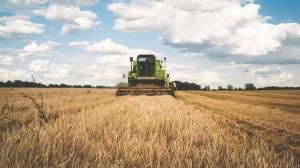 Un milion de lei pentru angajarea tinerilor in agricultura