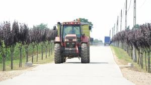 Reducerea accizei la motorina in agricultura creste la peste 420 de milioane de lei
