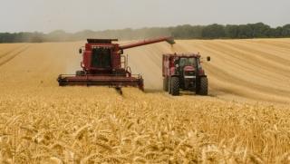 MADR si ASF cauta solutii pentru polite de asigurare destinate culturilor agricole