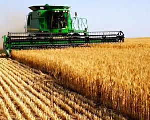 Fermierii care au suferit pierderi in urma calamitatilor din cursul anului trecut vor fi scutiti de impozitul pe venitul agricol