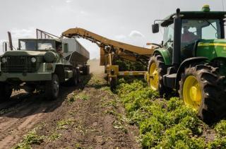 Recolta de euro la hectar: terenurile agricole din Romania se vand si cu 7.600 de euro