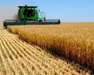 Riscuri si oportunitati ale finantarii in agricultura