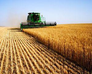 Romania a exportat produse agroalimentare de aproape 4 miliarde de euro