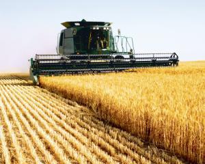 Noile taxe impovareaza agricultura romaneasca si scad competitivitatea sectorului agricol
