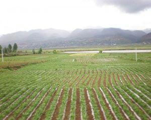 PNDR 2014-2020: In septembrie va fi lansata masura dedicata infrastructurii din mediul rural