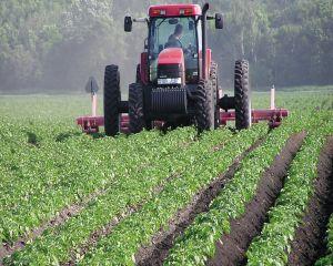 Agricultura este viitorul. Ce asteptari au fermierii de la UE in 2016