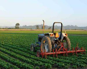 Carnetele de rentier agricol se pot viza in perioada 1 martie - 31 august 2016