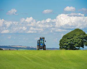 Guvernul a aprobat masuri financiare pentru sustinerea agricultorilor
