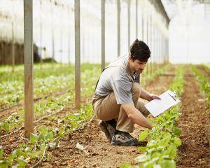 Cati fermieri au fost controlati de APIA si ce probleme au fost depistate