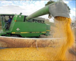 Romania este pe locul opt in UE la valoarea productiei agricole