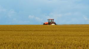 Statul subventioneaza cu 1,7964 lei litrul de motorina destinat agriculturii