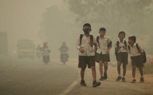 O.M.S: 90% dintre copiii din lume respira aer poluat