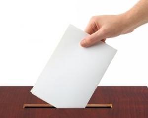 Alegeri 2014: descarca declaratia pe propria raspundere pentru votantii din diaspora