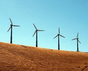 Guvern: Amanarea platii unor certificate verzi pana in 2017 va determina scaderea facturii la energie