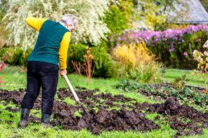 Munca obligatorie in folosul comunitatii pentru neplata amenzilor