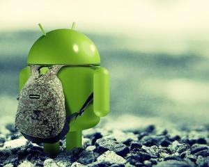 Gala Start Mobile 2013 by Google si IAB Romania: S-au anuntat agentiile castigatoare ale unei excursii la sediul Android din California