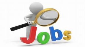 Digi | RCS & RDS face angajari masive pe toate domeniile: Sunt disponibile 500 de locuri de munca