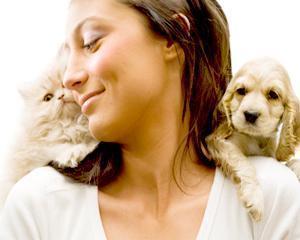 Cate dintre gospodariile cu animale de companie cumpara mancare specializata