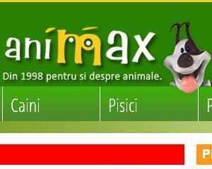 """Animax premiat pentru cel mai bun magazin online la categoria """"Pet Shop"""""""