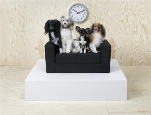 Colectie de mobilier pentru animalele de companie