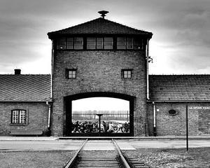 10 corporatii care au profitat de pe urma regimului nazist
