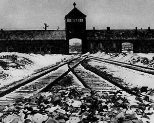 ANALIZA: IBM si Holocaustul, o pagina de istorie controversata