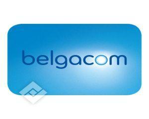 Guvernul belgian a gasit un nou CEO pentru Belgacom