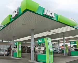 Petrolistii fac eforturi sa atraga clientii: Unelte de gradina, de vanzare in benzinarii