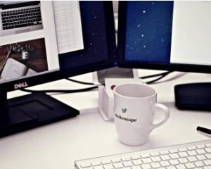 Blogging-ul. Intre pasiune si business de viitor
