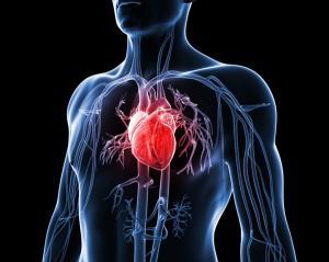 Bolile cardiovasculare omoara mai multi oameni decat diabetul zaharat si cancerul. Peste 17 milioane de decese anual