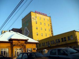 Boromir rascumpara o parte din capitalul companiei pe 5 milioane de lei