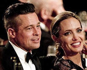 """Brad Pitt vinde vinuri: """"Am devenit fermier"""""""