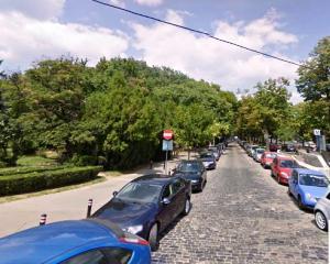 Parcurile din Bucuresti, la un pas de disparitie?