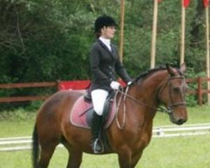 Doua saptamani pana la Transylvania Horse Show 2014