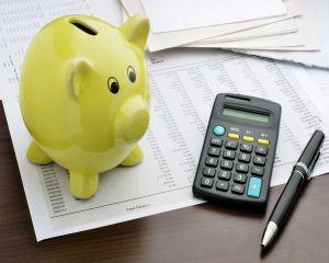 Excedent bugetar de 0,6%, la jumatatea anului