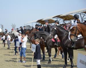 Salonul Calului revine, din toamna, in Bucuresti
